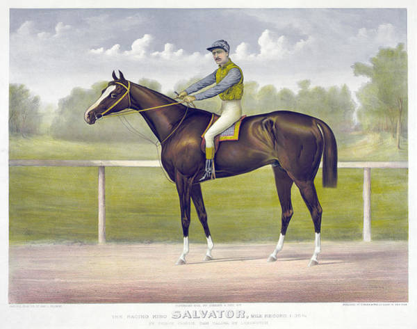 Drawing - Race Horse, C1891 by Granger