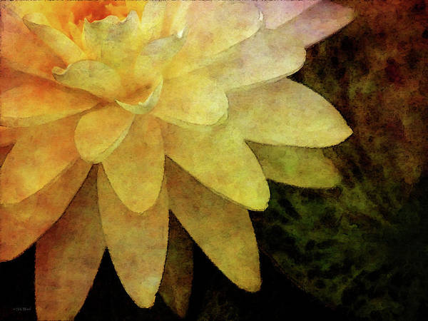 Photograph - Radial Patterns 4168 Idp_2 by Steven Ward