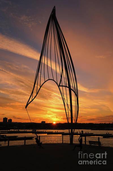 Photograph - Rafaga Unleashed Sunset 2 by Rachel Cohen