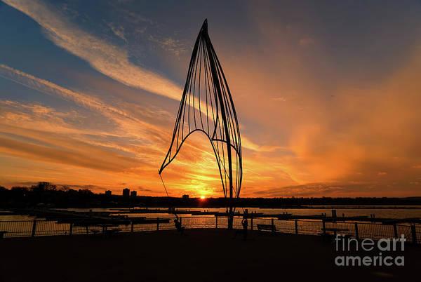 Photograph - Rafaga Unleashed Sunset by Rachel Cohen