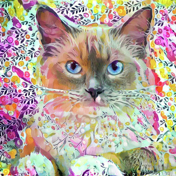 Digital Art - Ragdoll Cat Art by Peggy Collins
