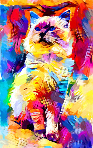 Wall Art - Painting - Ragdoll by Chris Butler