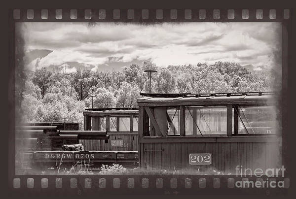 Photograph - Railroad Cars by Imagery by Charly