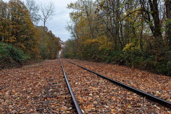 Photograph - Railroad Fall by Steven Clark
