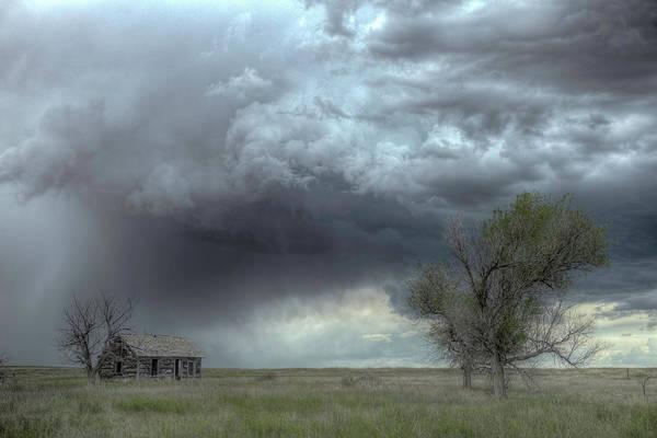 Photograph - Rain Down by Laura Hedien