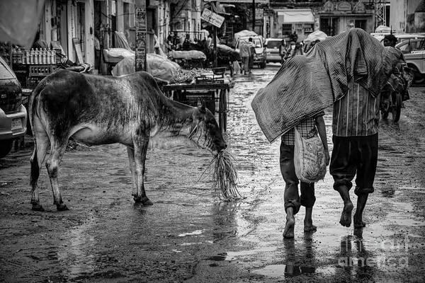 Wall Art - Photograph - Rain In Delhi by Stefano Senise