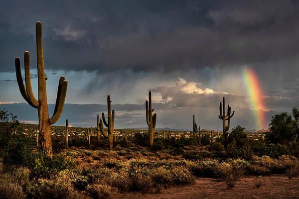 Wall Art - Photograph - Rainbow Amongst The Saguaro  by Saija Lehtonen