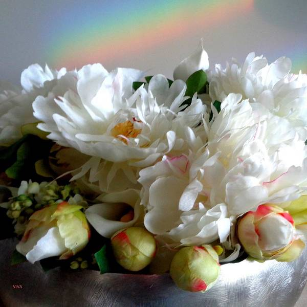 Rainbow Buds N' Blooms Three Art Print
