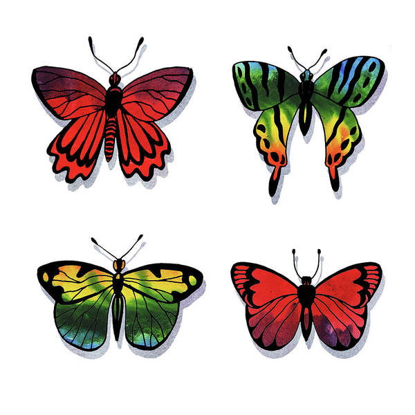 Wall Art - Painting - Rainbow Butterfly Collection  by Irina Sztukowski