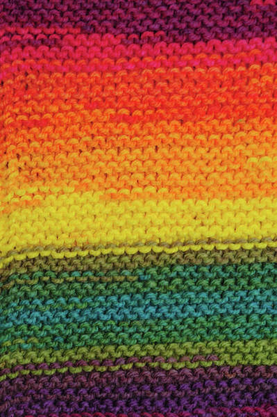 Photograph - Rainbow Colors And Knitting Passion. Eden by Jenny Rainbow