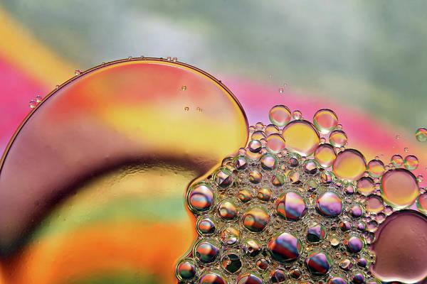Photograph - Rainbow Droplets by Jennifer Robin