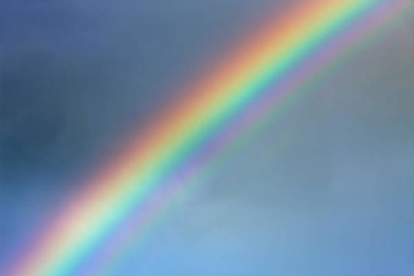 Outdoors Photograph - Rainbow by Frank Krahmer