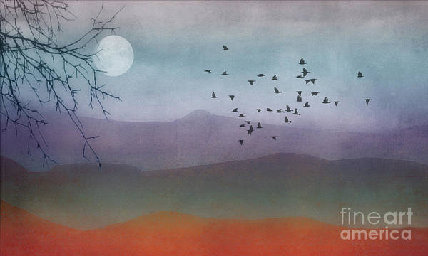 Bird In Flight Digital Art - Rainbow Hills by Tom York Images