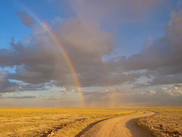 Savannah Photograph - Rainbow In Savannah by Helovi