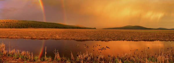 Oregon Wildlife Wall Art - Photograph - Rainbow Light by Leland D Howard
