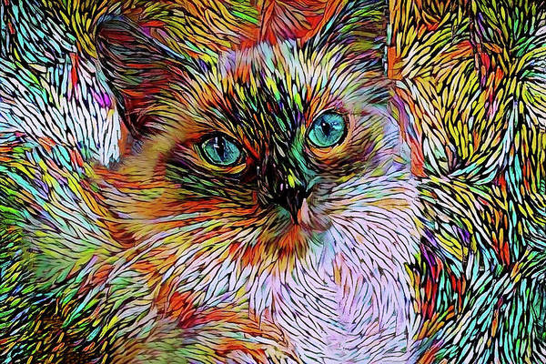 Digital Art - Rainbow Ragdoll Cat by Peggy Collins