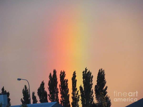Photograph - Rainbow Shinning Bright. by Joyce Woodhouse