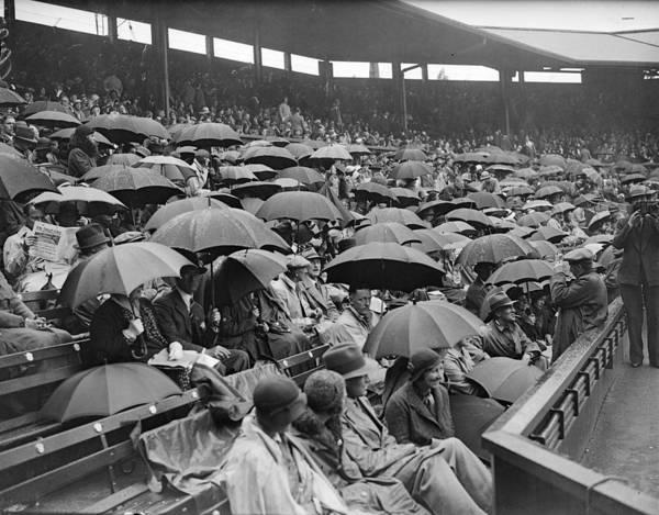 Rain Photograph - Rained On Rained Off by Fox Photos