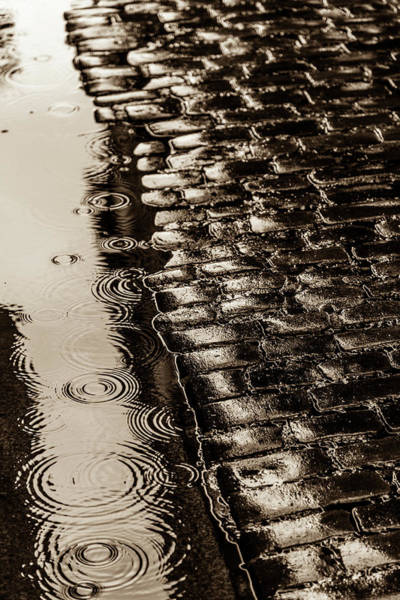 Wall Art - Photograph - Rains In Old York by W Chris Fooshee