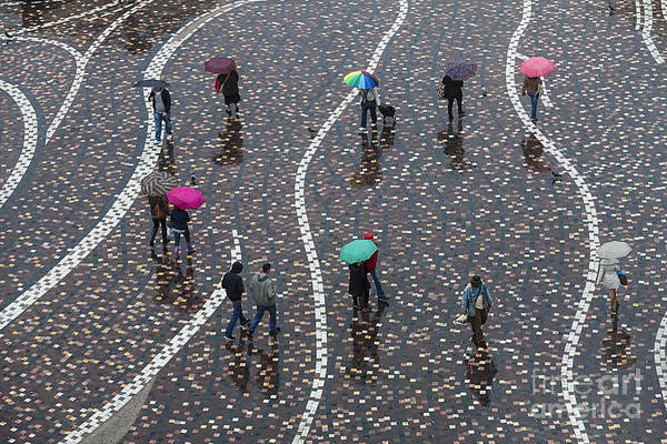 Busy Wall Art - Photograph - Rainy Day by Anastasios71