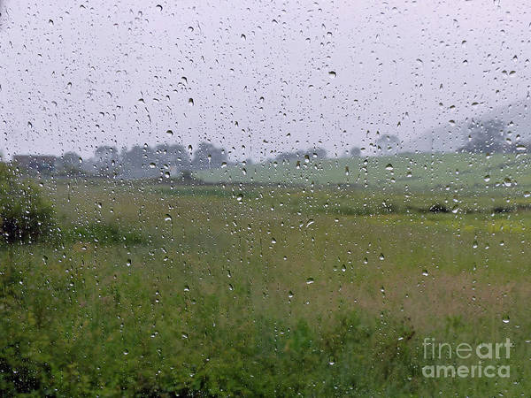 Photograph - Rainy Day by Phil Banks