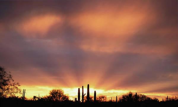 Photograph - Rainy Day Sunset by Elaine Malott