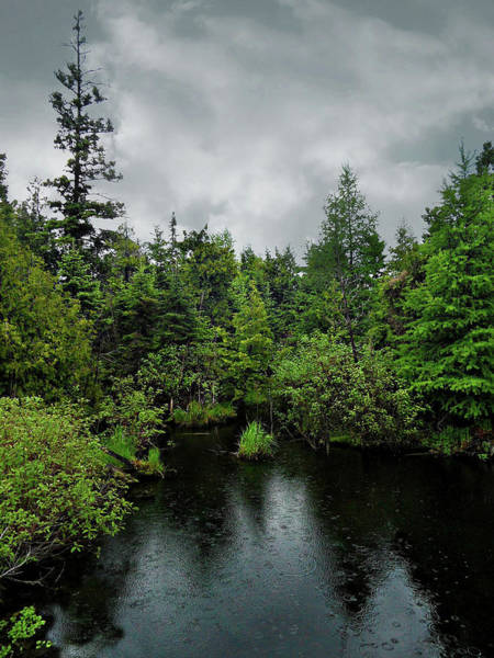 Photograph - Rainy Days 1 by Cyryn Fyrcyd