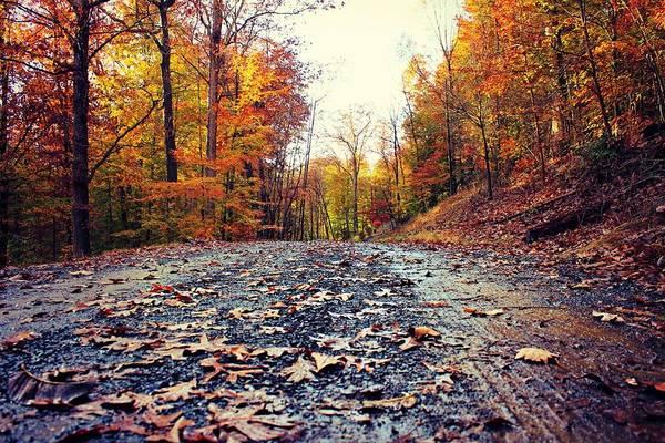 Photograph - Rainy Fall Roads by Candice Trimble