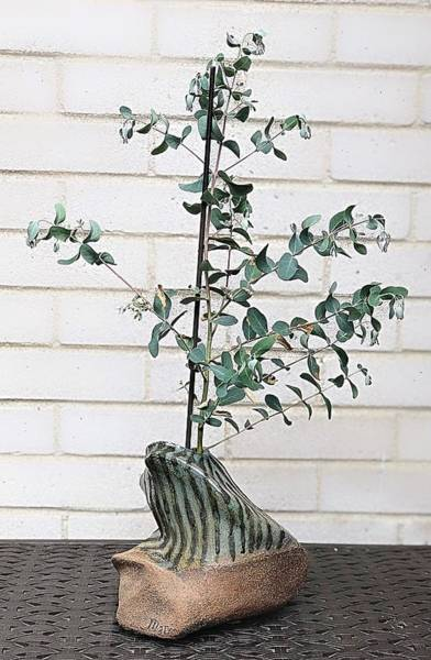 Mixed Media - Raku And Living Eucalyptus by Mario MJ Perron