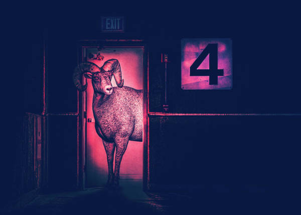 Drawing - Ram In The Door by Bob Orsillo