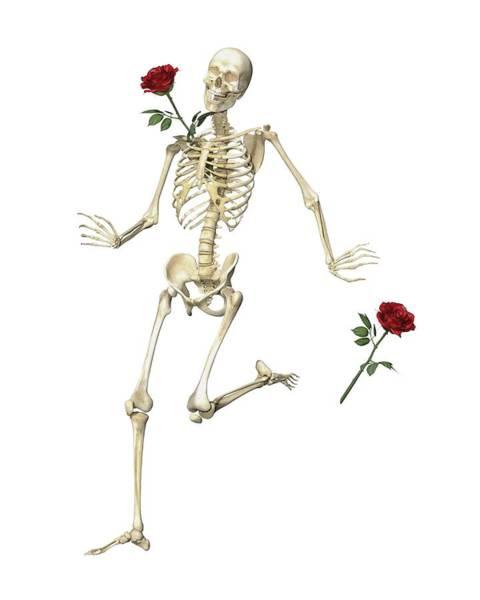 Wall Art - Digital Art - Rambling Rose Running Skeleton by Betsy Knapp