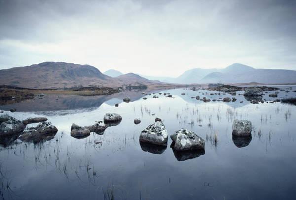 Moor Photograph - Rannoch Stones by Epics