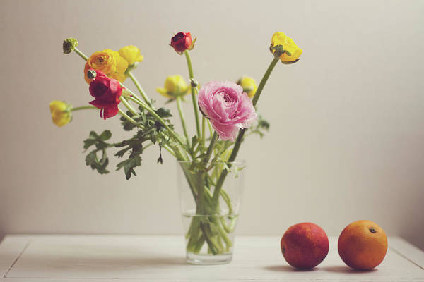 Photograph - Ranunculus Flowers And Red Oranges On by Copyright Anna Nemoy(xaomena)