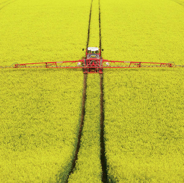 Photograph - Rape Seed Spraying by Jt Images