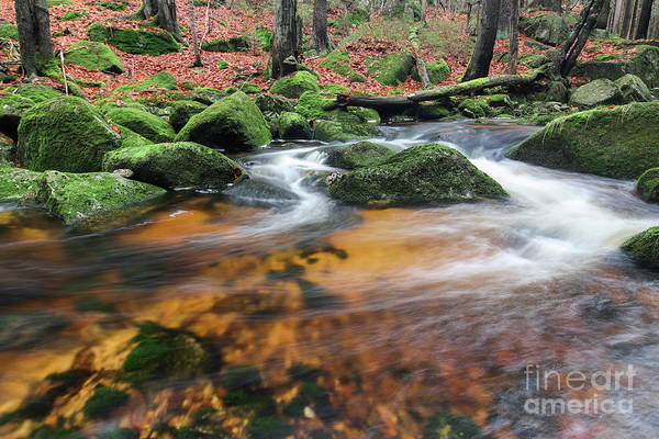 Wall Art - Photograph - Rapids On Jedlova Brook, Jizera Mountains,  Czech Republic by Michal Boubin