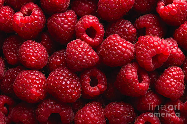 Raw Wall Art - Photograph - Raspberry Fruit Background by Sj Travel Photo And Video