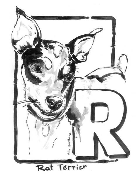 Wall Art - Painting - Rat Terrier Dog Drawing by Kim Guthrie