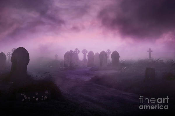 Wall Art - Photograph - Rave In The Grave by Terri Waters