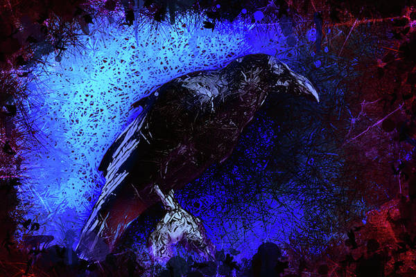 Mixed Media - Raven by Al Matra