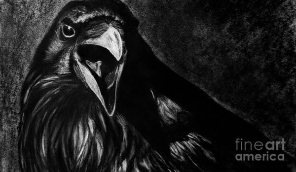 Drawing - Raven by Michael Cross