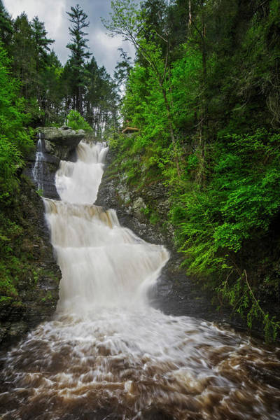 Photograph - Raymondskill Waterfalls by Susan Candelario