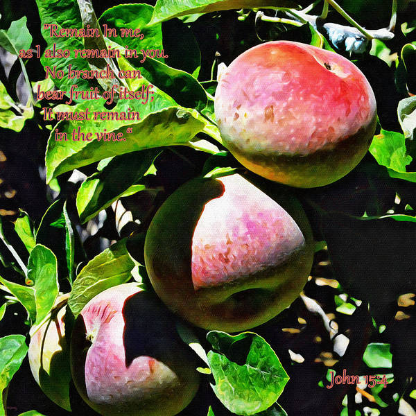 Digital Art - Real Fruit by Glenn McCarthy Art and Photography