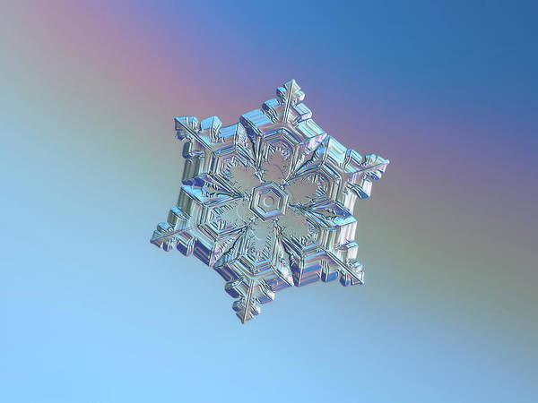 Photograph - Real Snowflake - 05-feb-2018 - 12 by Alexey Kljatov