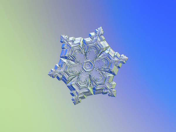 Photograph - Real Snowflake - 05-feb-2018 - 12 Alt by Alexey Kljatov