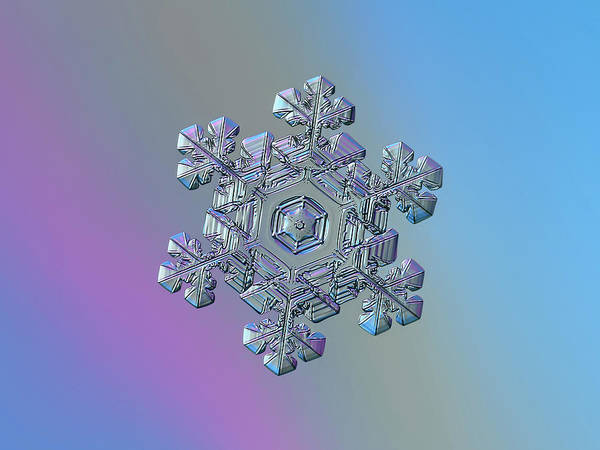 Photograph - Real Snowflake - 05-feb-2018 - 13 by Alexey Kljatov
