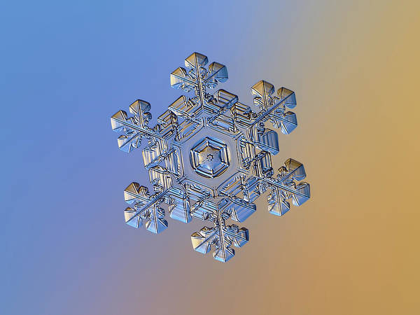 Photograph - Real Snowflake - 05-feb-2018 - 13 Alt by Alexey Kljatov