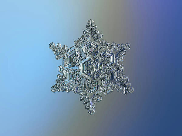 Photograph - Real Snowflake - 05-feb-2018 - 15 by Alexey Kljatov