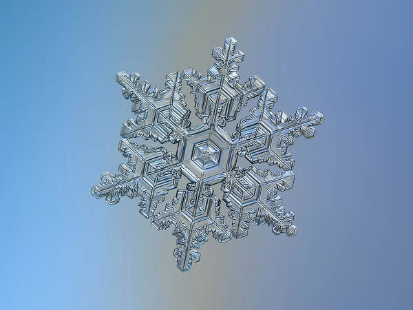 Photograph - Real Snowflake - 05-feb-2018 - 16 by Alexey Kljatov