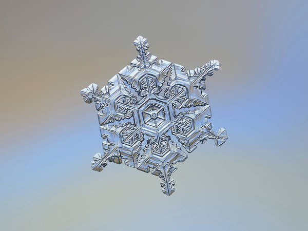 Photograph - Real Snowflake - 05-feb-2018 - 18 by Alexey Kljatov