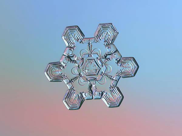 Photograph - Real Snowflake - 10-jan-2019 - 1 by Alexey Kljatov